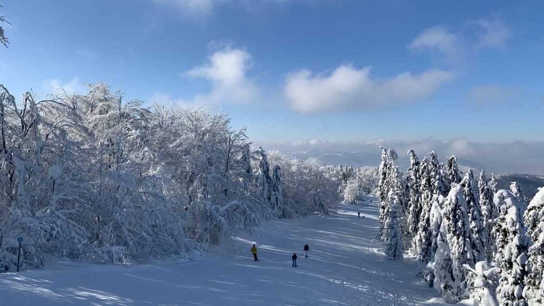 SNOWPARADISE